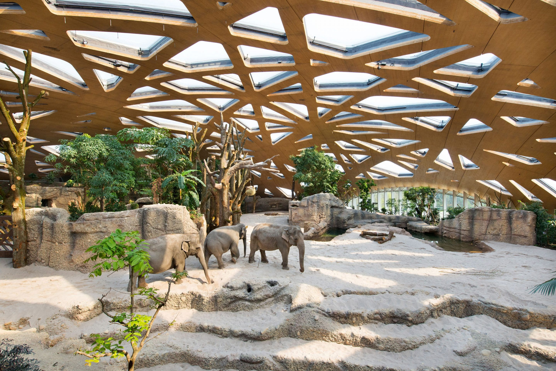 Gesundheitsschutz als Qualitätsmerkmal – Emissionsarme Holzwerkstoffplatten der elka-Holzwerke bieten Architekten Rechtssicherheit bei Richtwerten der Innenraumluft