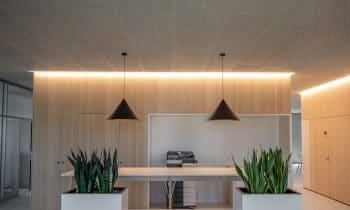 Natürliche Akustikplatten für angenehmes Arbeiten im Büro